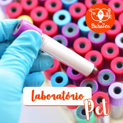 laboratorio-veterinario